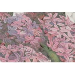 Kadidlo Hyacint 30g