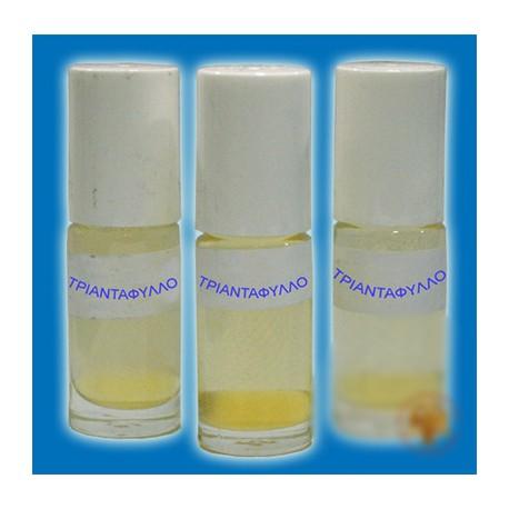 Svatý olej  (s aroma růží) – prostředek k duchovní očistě a ochraně