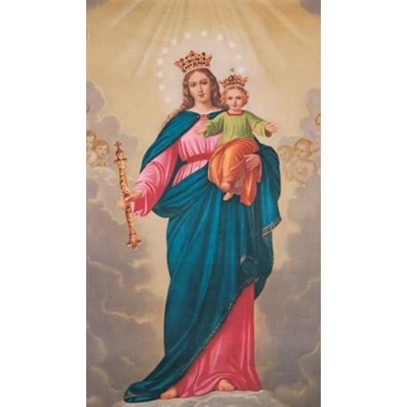 Panna Maria, Pomocnice křesťanů