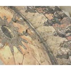Kadidlo Betlémské hvězdy (ochranné)
